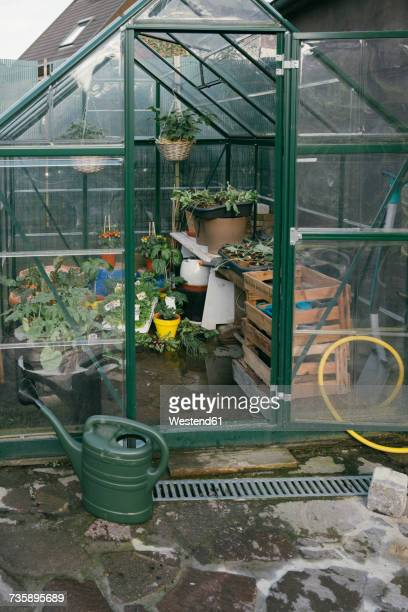 Greenhouse with seedlings in a garden