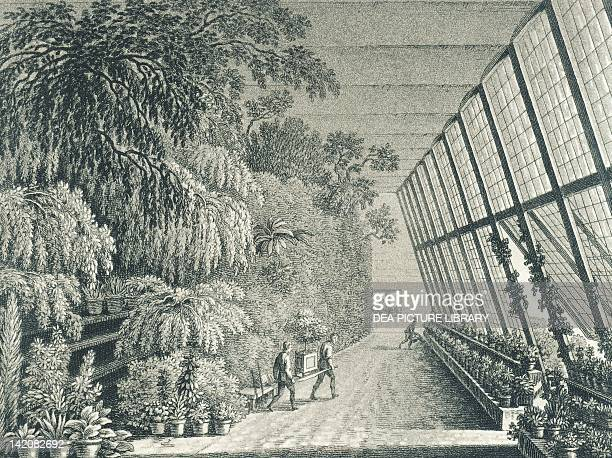 Greenhouses of Schoenbrunn Castle in Vienna Austria19th Century Engraving