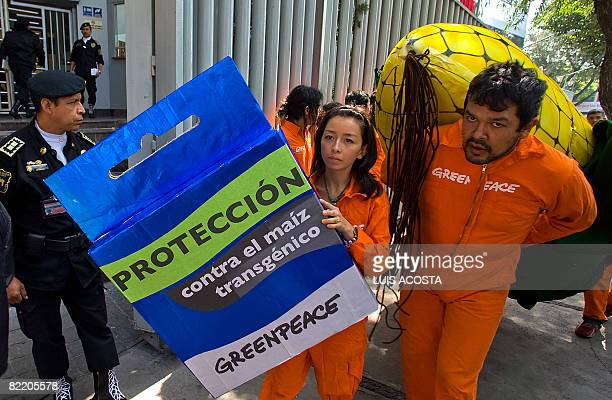 Greenpeace activists carry big mock corncob and condom with an inscription that reads 'Protection Against Transgenic Corn' during a protest in front...