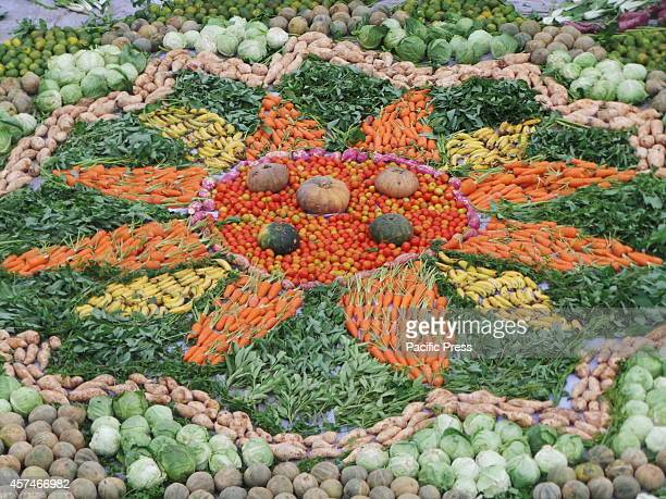 Greenpeace and other civic groups creates the largest Mandala food art made of 1000 kilos of common organic fruits and vegetables spread throughout...