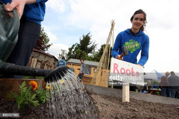 Greenpeace Campaigner Anna Jones hammers in a sign at the allotment bought by Greenpeace on land earmarked for the construction of a new runway at...