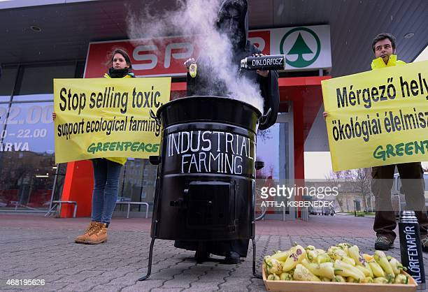 Greenpeace supporters against the dangers of the toxic paprika in Hungary in front of a supermarket in Budapest on March 31 2015 Greenpeace members...
