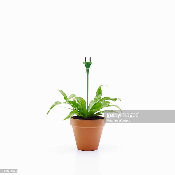 greenpower plugplant I