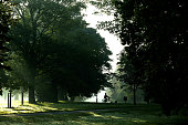 Greenwich Park, early morning.