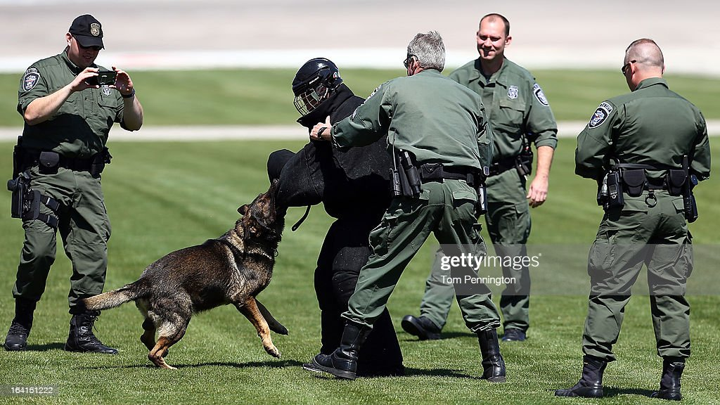 Greg Biffle, driver of the #16 3M Ford Fusion, runs from Moro, a Fort Worth Police Department K-9 during an exhibition at Texas Motor Speedway on March 20, 2013 in Fort Worth, Texas.