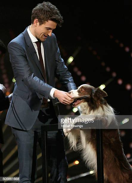 Greg James and dog Matisse present the Comedy award at the 21st National Television Awards at The O2 Arena on January 20 2016 in London England
