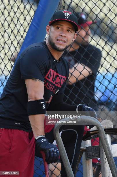 Gregor Blanco of the Arizona Diamondbacks leans on the cage during batting practice before the game against the Los Angeles Dodgers at Dodger Stadium...