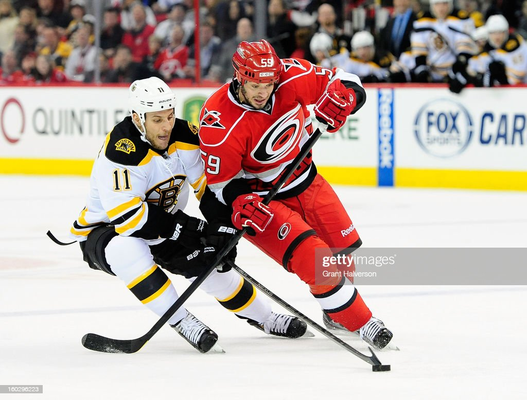 Gregory Campbell #11 of the Boston Bruins pokes the puck away from Chad LaRose #59 of the Carolina Hurricanes during play at PNC Arena on January 28, 2013 in Raleigh, North Carolina.