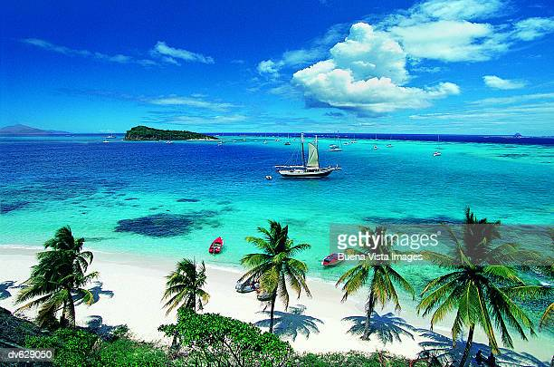 Grenadine, Tobago, West Indies