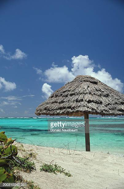 Grenadines, Saint Vincent Island, palapa on beach