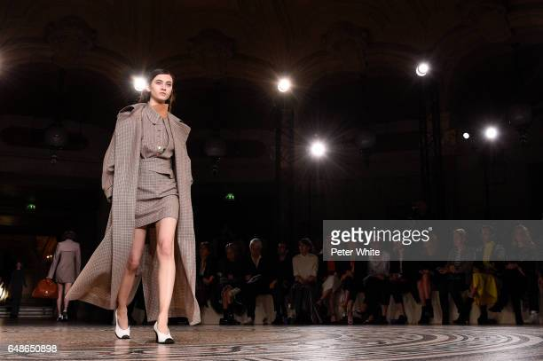 Greta Varlese walks the runway during the Stella McCartney show as part of the Paris Fashion Week Womenswear Fall/Winter 2017/2018 on March 6 2017 in...