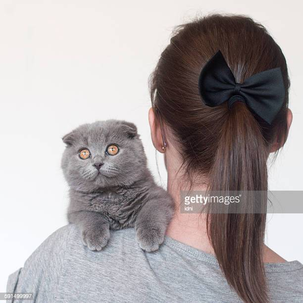 Grey cat with amber eyes