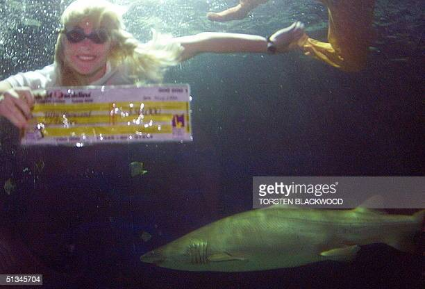 A grey nurse shark circles as Australian longdistance swimmer Susie Maroney displays a cheque she retrieved from the floor of the tank at Oceanworld...