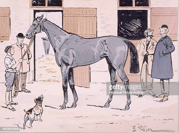 A Grey Racehorse is Viewed in Its Stable