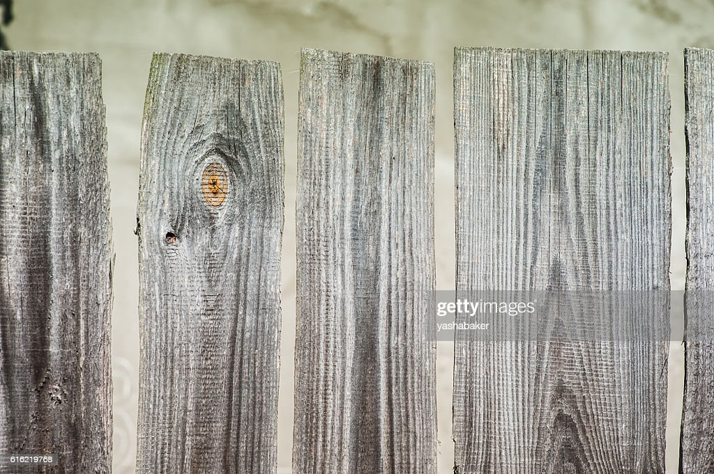 Grey wood  old planks texture background : Photo