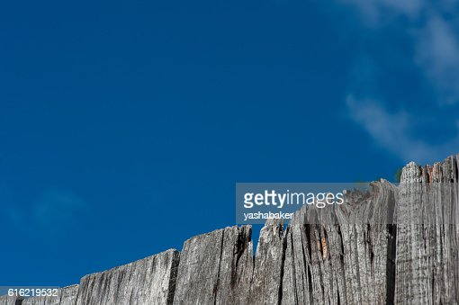 Grey wood texture  with blue sky : Stock Photo