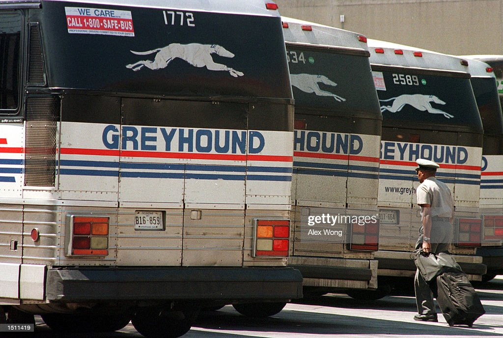 greyhound bus company Celebrate greyhound lines 100th anniversary and experience its rich history.