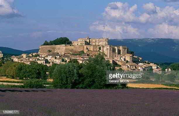 Grignan RhonesAlpes France Field of lavandin and the castle of Grignan