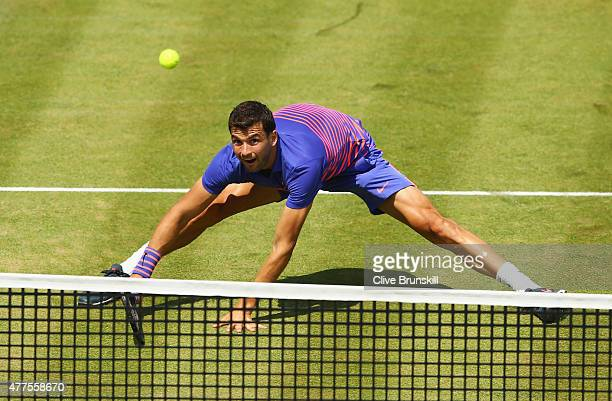 Grigor Dimitrov of Bulgaria volleys in his men's singles second round match against Gilles Muller of Luxembourg during day four of the Aegon...