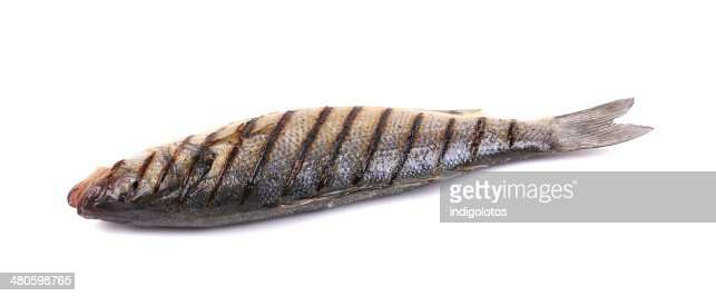 Grilled fish. : Stock Photo
