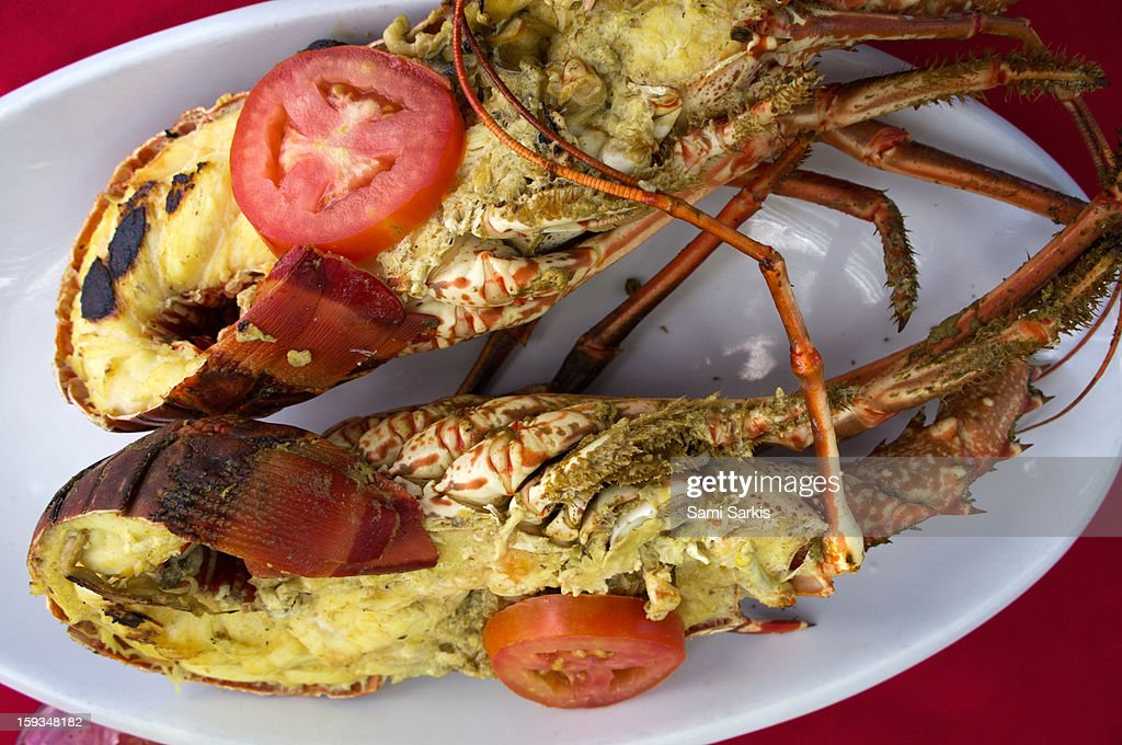 Grilled lobsters on a plate : Stock Photo