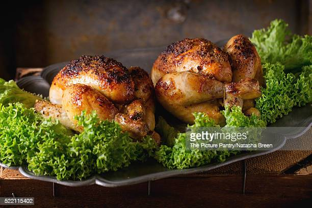 Grilled mini chicken