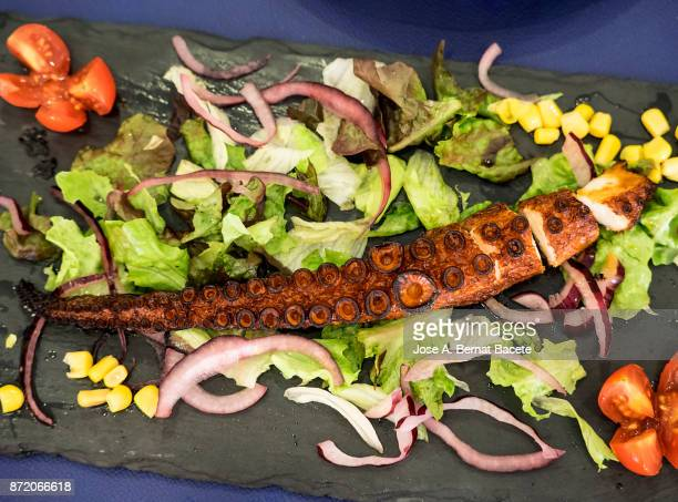 Grilled octopus tentacle served on a plate of slate with salad.