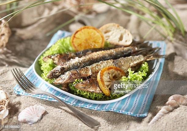 Grilled sardines with salad and lemon in plate