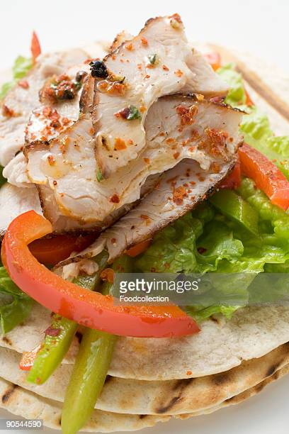 Grilled tortillas with chicken and peppers, close up