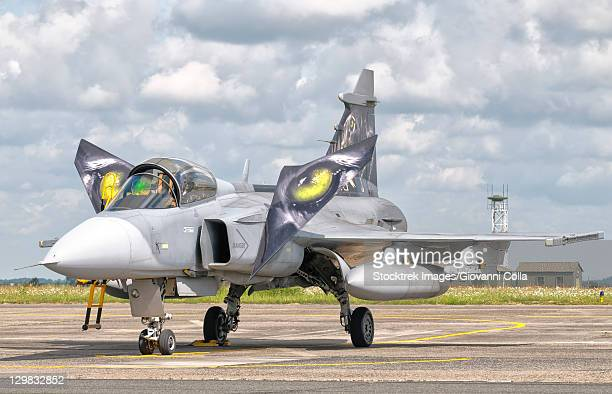 A JAS-39 Gripen of the Czech Air Force at Cambrai Air Base, France, during the NATO Tiger Meet 2011.