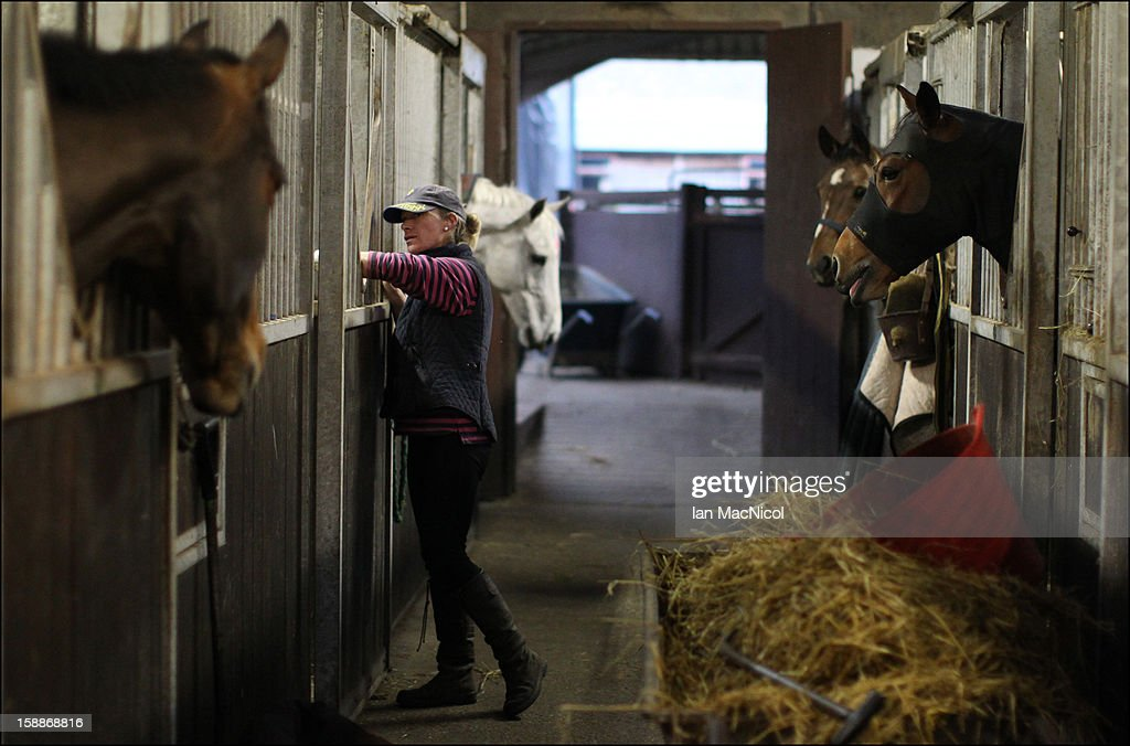 Groom Nicky Thomson perpares horses prior to a fox hunt with The Duke of Buccleugh's Fox hounds on November 08, 2011 in St Boswells, Scotland.