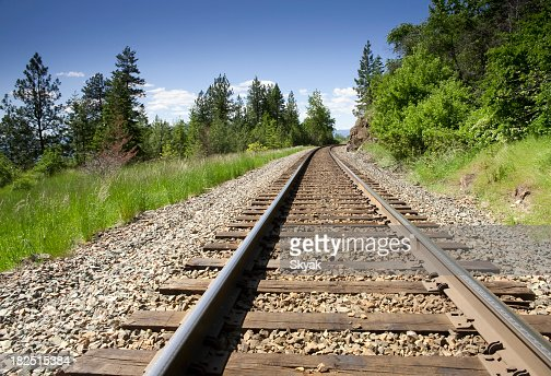 Ground view of a train track in the mountains with trees