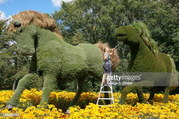 A groundskeeper waters the horseshaped topiary plants at Mosaiculture Montreal Quebec Canada 2013