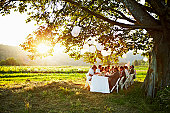 Group dining around table outside in field