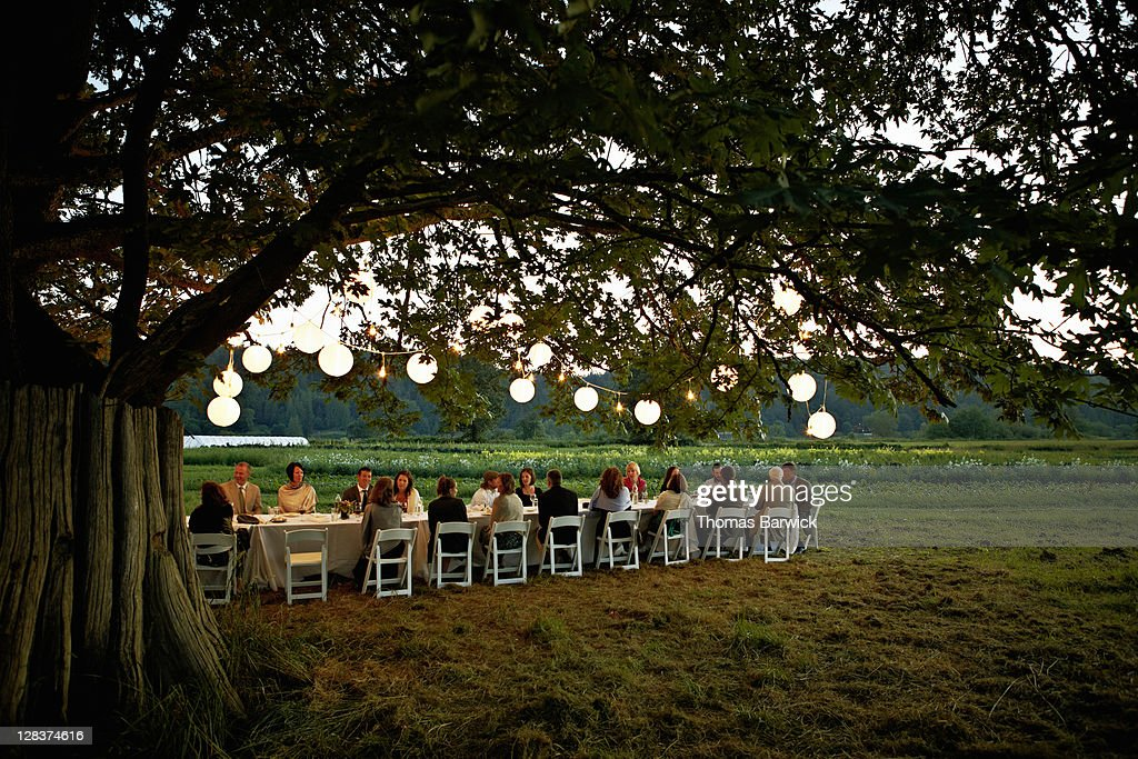Group dining outside under tree with lanterns : Stock Photo
