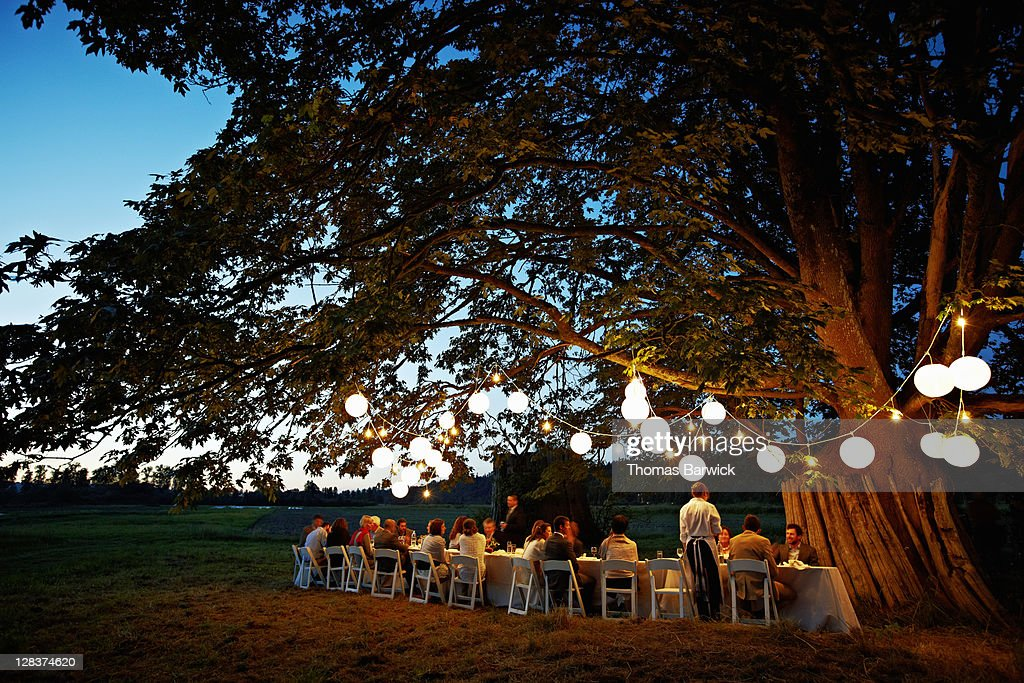 Group dining outside under tree with lanterns