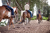 A group explores a trail on horseback