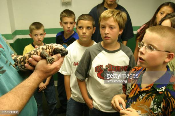 A group of boys looking at a Gila Monster at the New Mexico State Fair