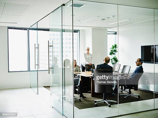 Group of business executives having team meeting