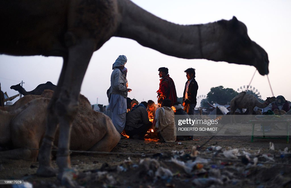 A group of camel owners come together around a fire at dawn on the camel fair grounds in the outskirts of the small town of Pushkar on November 22, 2012. Thousands of livestock traders from the region come to the traditional camel fair where livestock but mainly camels are traded. The annual five-day camel and livestock fair is one of the world's largest camel fairs. AFP PHOTO/Roberto Schmidt