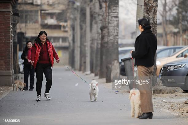 A group of Chinese women chat as they walk their dogs at a residential community in Beijing on March 11 2013 Regulations in Beijing and other major...