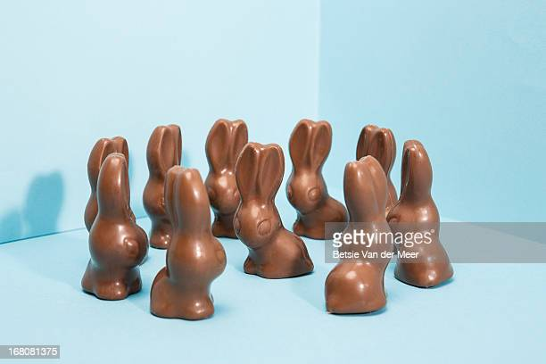 Group of chocolate bunnies on blue background.