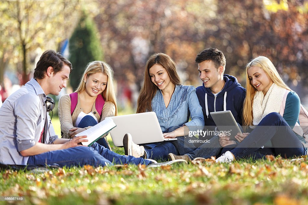 img essay, college students