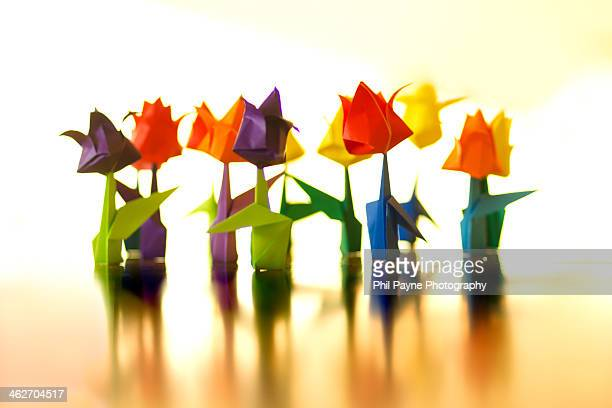 Group of colourful paper tulips