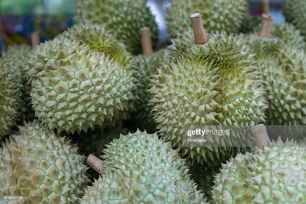 Group of durian in the traditional thai market store. : Stock Photo