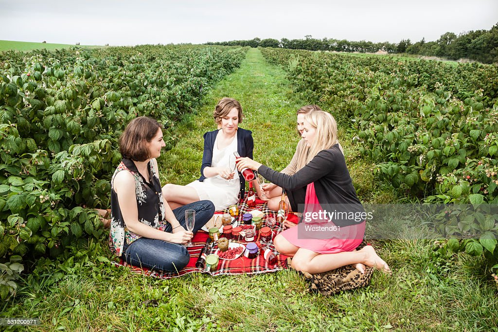 Group of female friends having a picnic between raspberry bushes
