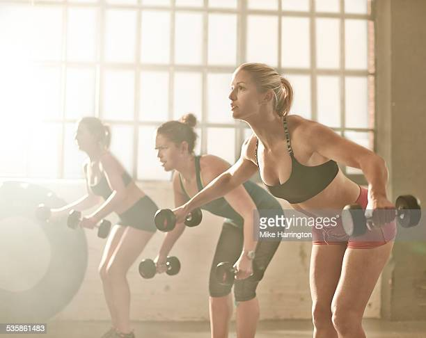 Group of fit healthy females lifting dumbbells