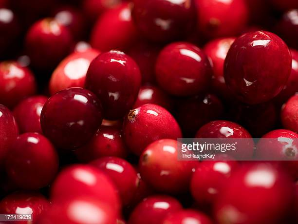 Group of fresh red shining cranberries