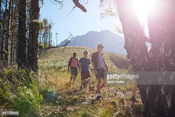 Group of friends hiking down mountain, at sunrise