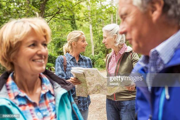 Group of friends on hiking trail, looking at map